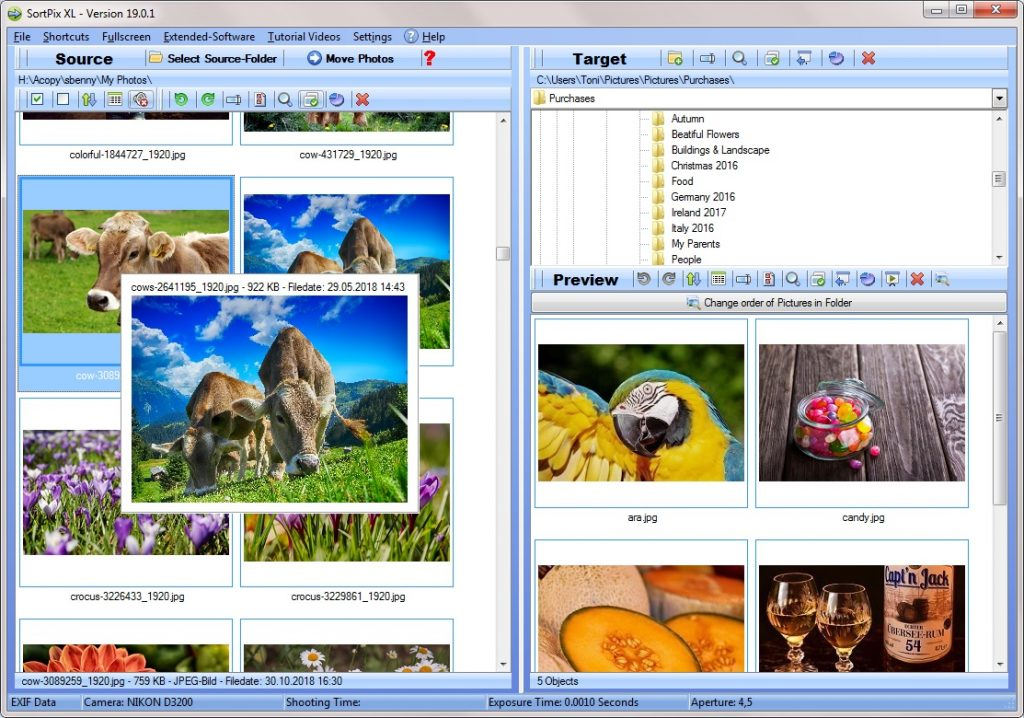 Photo manager software